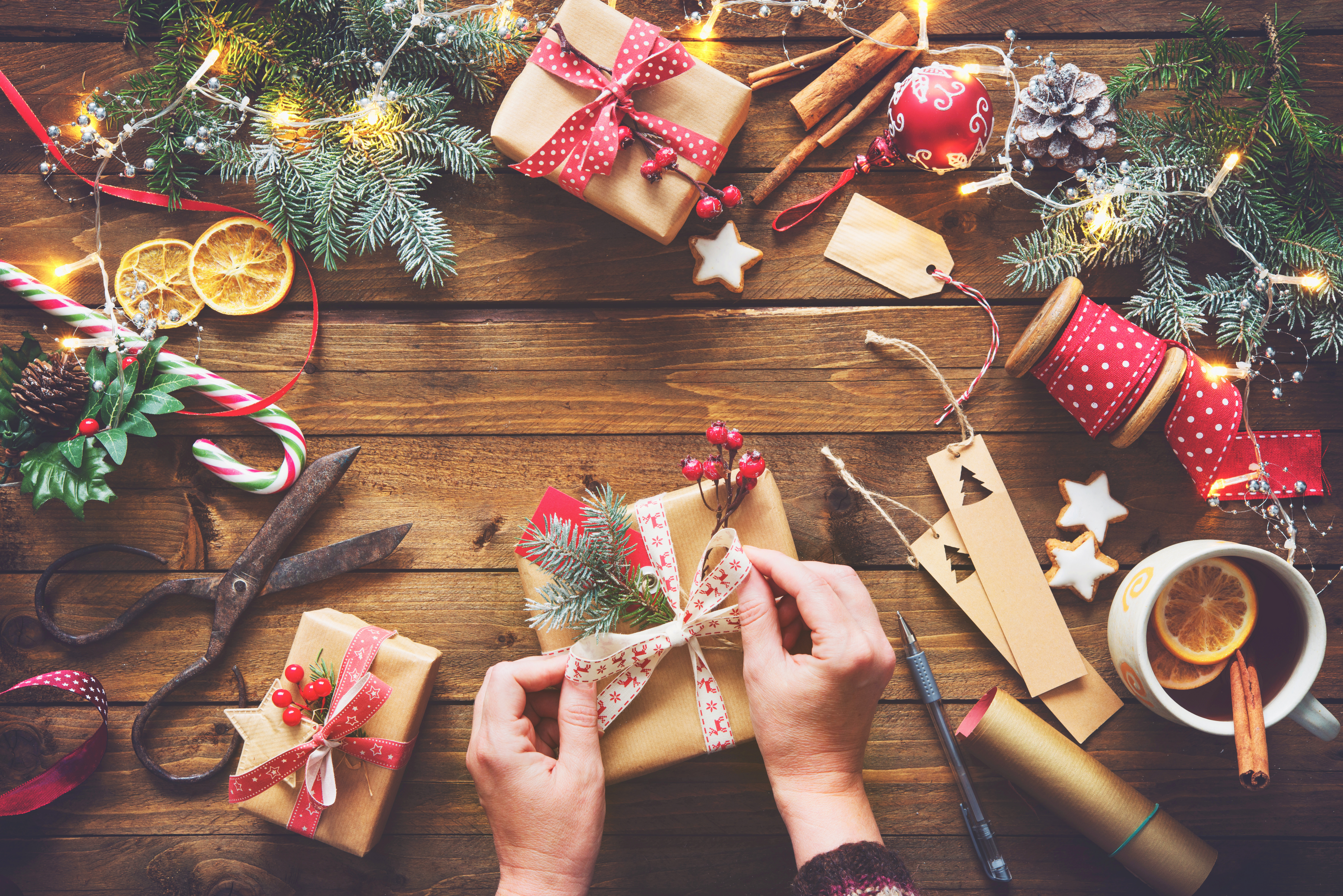 The ultimate 2017 Holiday Gift Guide by The CE Shop